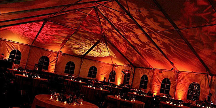 tent rental ceiling decor