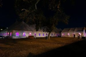 A Multicolored Masterpiece of Tent and Party Rentals _2