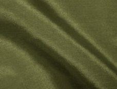 Bengaline Fern Green