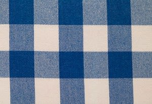Blue and White Checkered