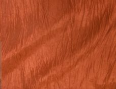 Crinkle Orange- NEW!