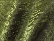 Crushed Iridescent Moss