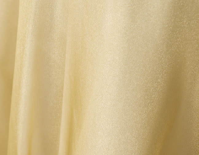Stuart-Event-Rentals-Linen-Sparkle-Organza-Gold