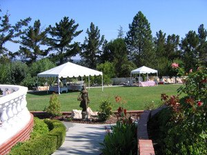 Tented Backyard Wedding_3